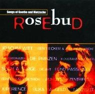 """Dauerthema für SPV: die CD """"Rosebud Red"""""""