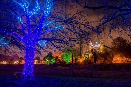 Ab 2018 auch in Dresden und Stuttgart vor Ort: der Christmas Garden (Bild: Christmas Garden Deutschland GmbH)