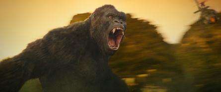"Ab heute im Handel: die Blu-ray zu ""Kong: Skull Island"" (Bild: Warner)"