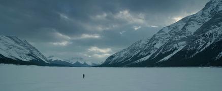 """""""The Revenant"""" legte in den deutschen Kinos zu (Bild: Fox)"""