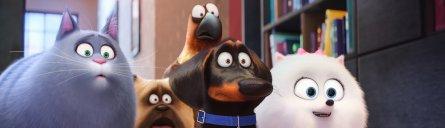 """Kinocharts Deutschland Trend: """"Pets"""" kommt, sieht und siegt"""