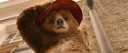 """""""Paddington 2"""" kommt bereits im November (Bild: Studiocanal)"""