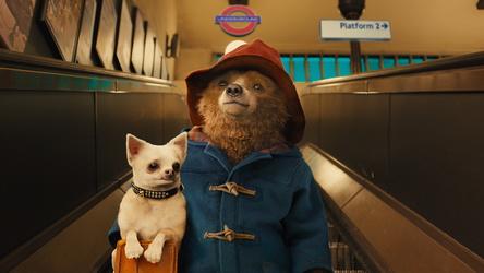 """Paddington"" ist zurück - und lustiger denn je (Bild: Studiocanal)"