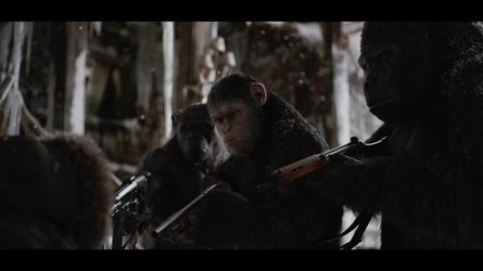"""""""Planet der Affen: Survival"""" ist neue Nummer eins in Frankreich (Bild: Fox)"""
